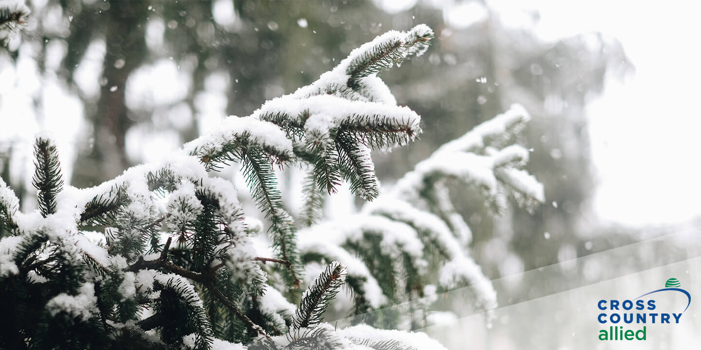 Like the Snow? These Locations are Great for Medical Techs in the Winter Months