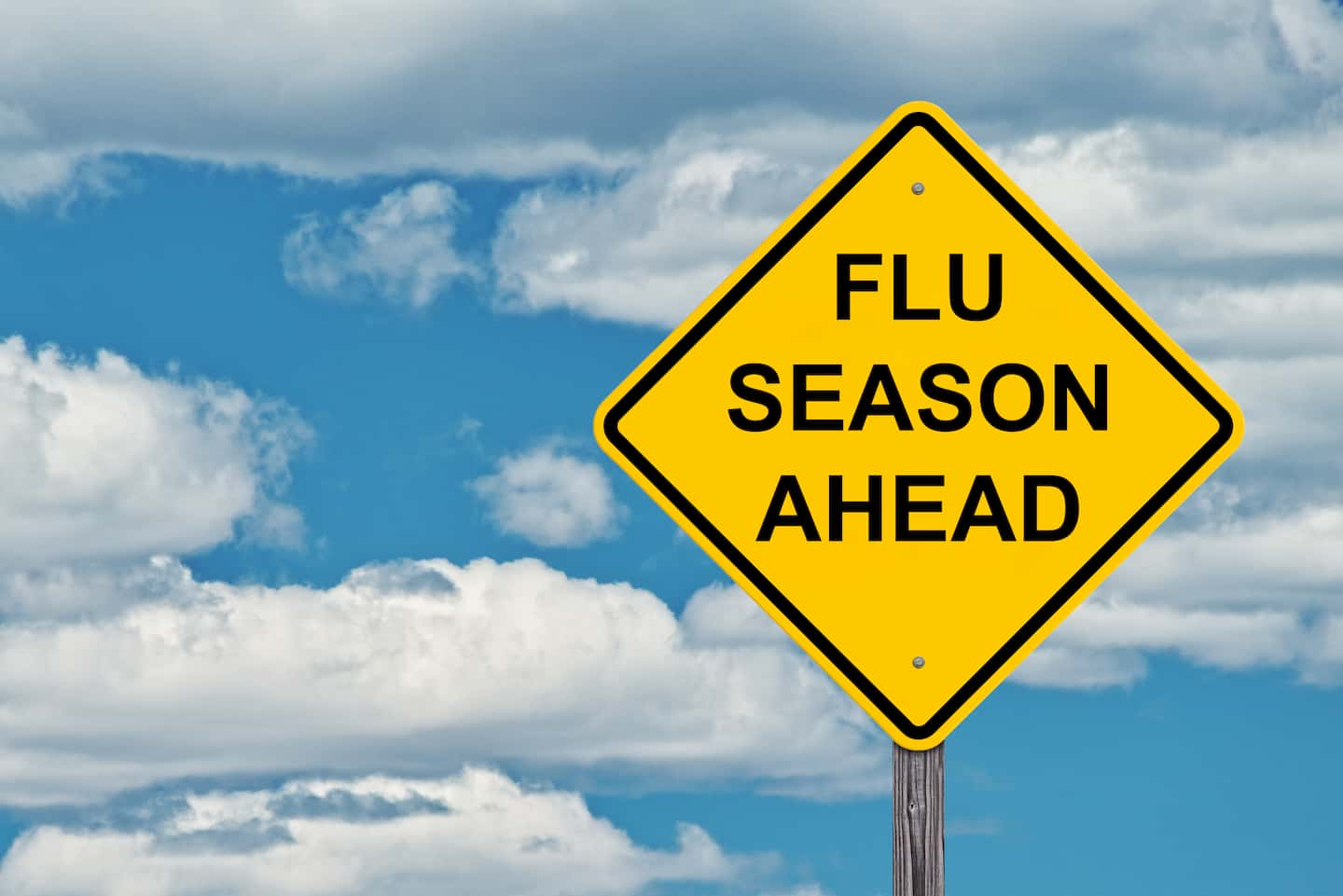 Hero blog Flu Season Will Be One of the Busiest TA Providers